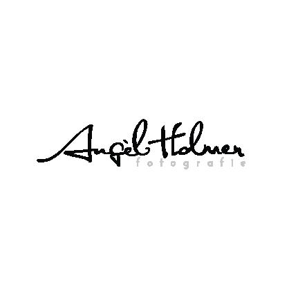 2019 02 20 01 Kerkveld Wesite Logo-40
